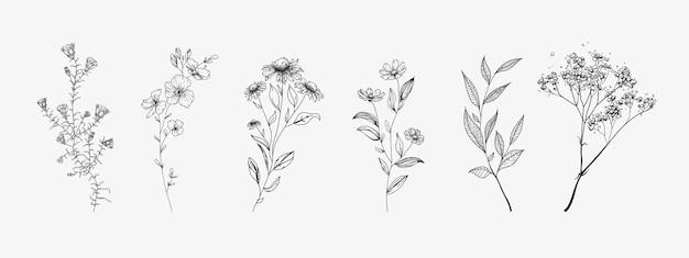 Набор полевых цветов. эскизный стиль.