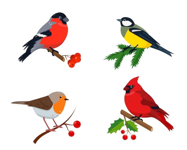 クリスマスと新年のデザインの冬の鳥のセット
