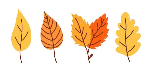 Набор желтых и оранжевых осенних листьев, изолированные на белом фоне