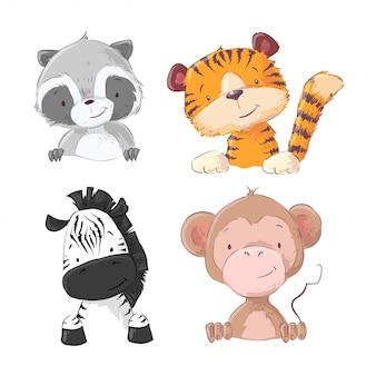 얼룩말 원숭이 호랑이 새끼 너구리의 집합입니다. 만화 스타일. 벡터