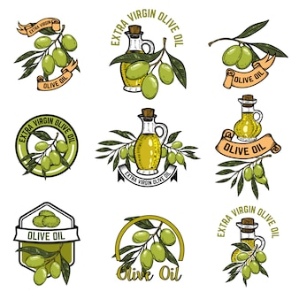 Set of olive oil emblems. olive branch.  elements for logo, label, emblem, sign.  illustration