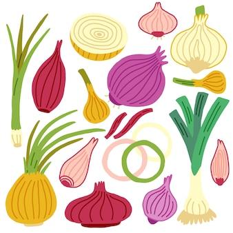 Установить зеленый лук, шалот, мускатный орех, лук-порей, репу. вектор овощи рука рисовать