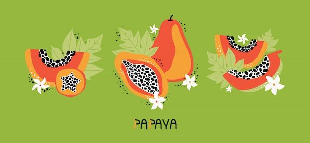 Установите оранжевую папайю с листьями и цветами. коллекция рисованной целые и нарезанные фрукты тропических фруктов с мясом, семена. диетическая веганская еда, органическая. каракули джунгли фрукты. плоская иллюстрация
