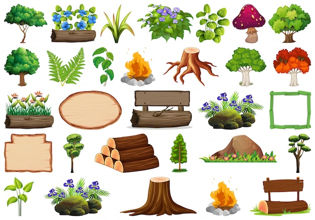 Set of ornamental plants and elements