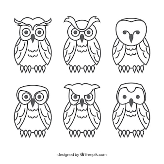 Set of outline owls