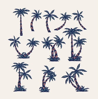 Set of palm trees, hand drawn line style with digital color, vector illustration