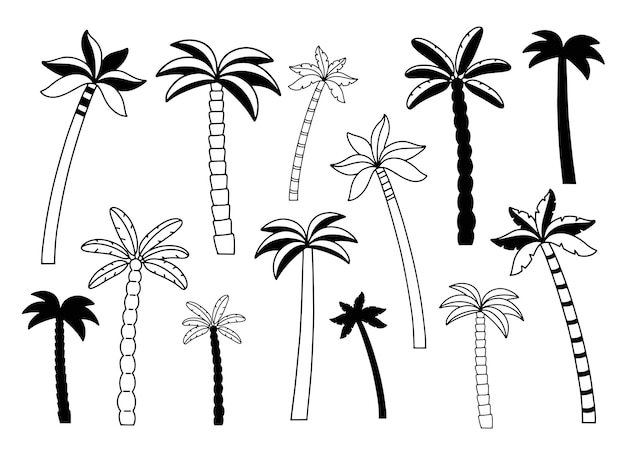 Set of palm trees, vector illustration, hand drawn and silhouette of palm, isolated icon. black drawing on a white background.