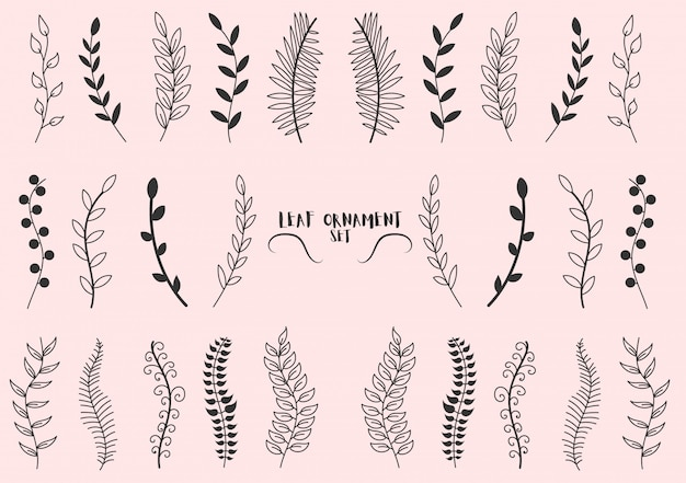 Set of pattern tree branches, eucalyptus trees, palm leaves, grass.hand made sketch of vintage elements leaves, flowers, swirls and feathers.colored elements drawn with a pen brush. illustration