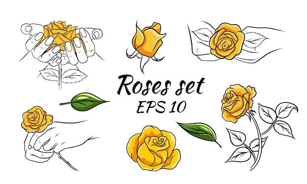 Set of patterns with roses