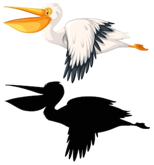 Set of pelican concept