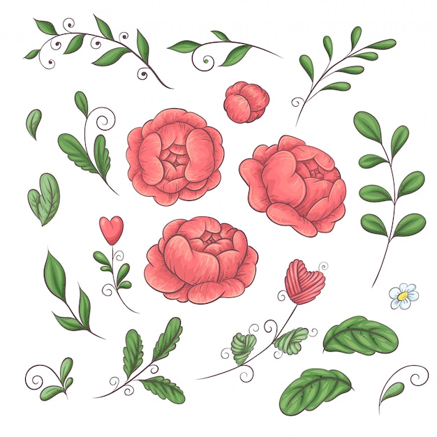 A set of peonies and floral elements