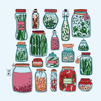 Set of pickled jars with vegetables, fruits, herbs and berries on shelves. autumn marinated food. colorful illustration.