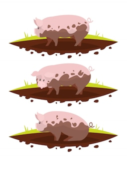 Set pig in a puddle of mud.