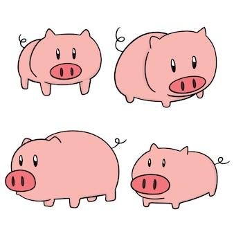 Set of pig