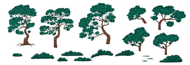 Set of pine trees and bushes in chinese style