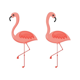 Set of pink flamingos isolated . vector illustration.