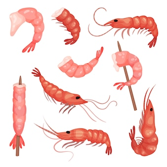 Set of pink shrimps. peeled prawns without heads. marine product. delicious snack. seafood theme