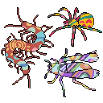 Set of pixel art isolated insect with collorful pattern