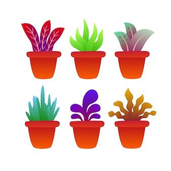 Set of plant growing on pot illustration