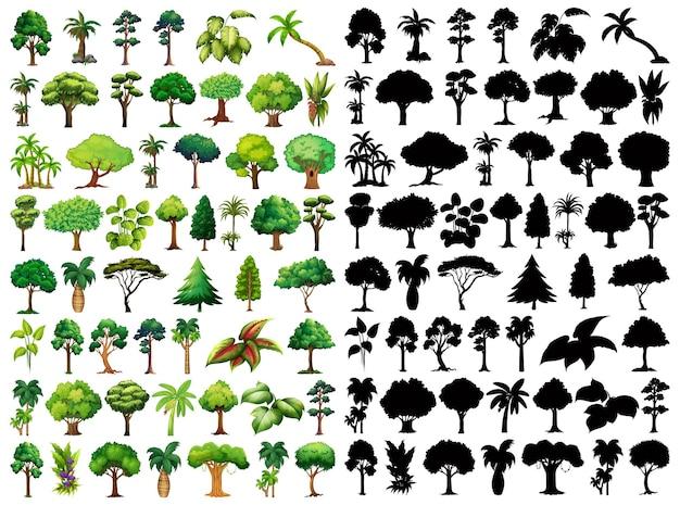 Insieme di pianta e albero con la sua silhouette