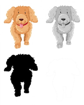 Set of poodle character