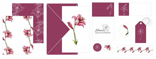 Set of postcards with lily flowers