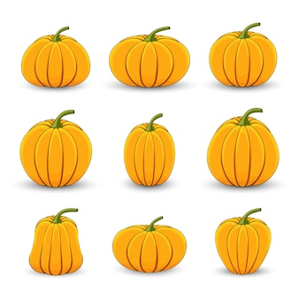 Set pumpkins in different sizes and shapes