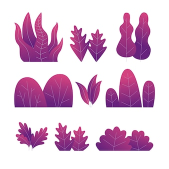 Set of purple plants. different trees, bushes and leaves.   illustration.