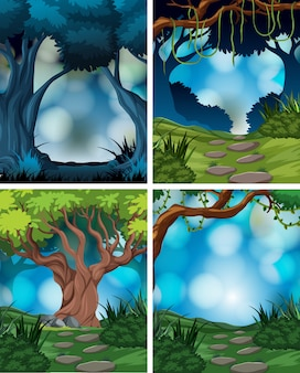Set of rainforest scene