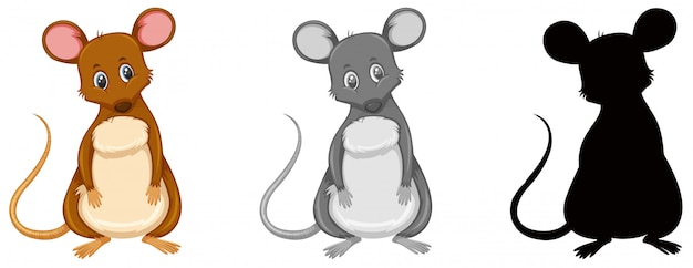 Set of rat character