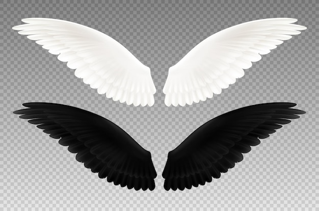 Set of realistic black and white pair of wings on transparent  as symbol of good and evil isolated