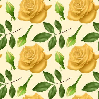 Set of realistic colorful roses