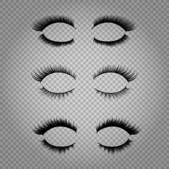 Set of realistic false lashes for upper and lower eye lids isolated on transparent background