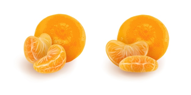 Set of realistic mandarin or tangerine slices. isolated peeled citrus segments with whole fruit.