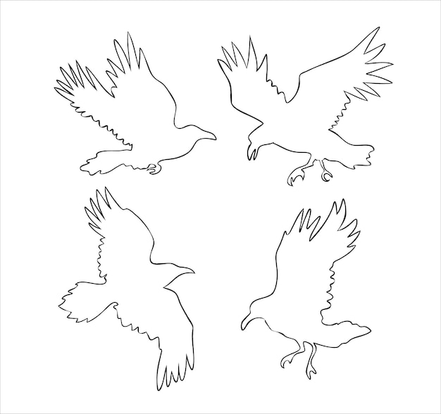 Set of realistic raven vector silhouettes for icons hand drawn style