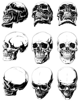 Set of realisticblack and white human skulls