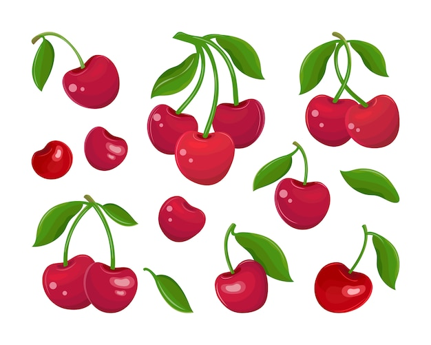 Set of red cherries on a white background. collection of cherry fruits, stems and leaves in vector. juicy maroon berry. sweet fruit cartoon. hand drawn flat illustration.