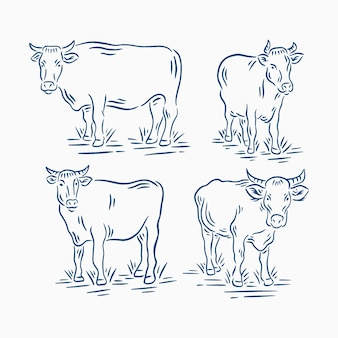 Set of retro vintage cattle or cow in farm illustration