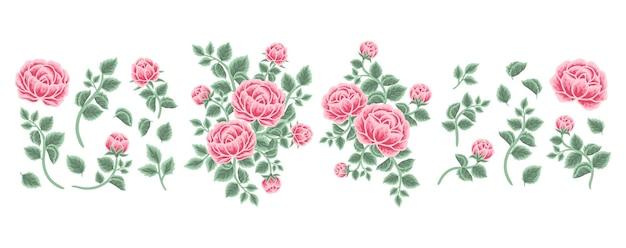 Set of rose, peony flower, leaf branch, feminine floral bouquet arrangements