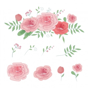 Set of roses and bouquets, watercolor vector