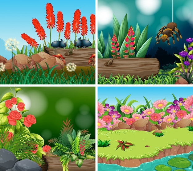 Set scene with nature theme illustration