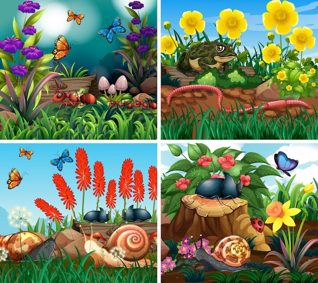 Set of scene with nature theme illustration