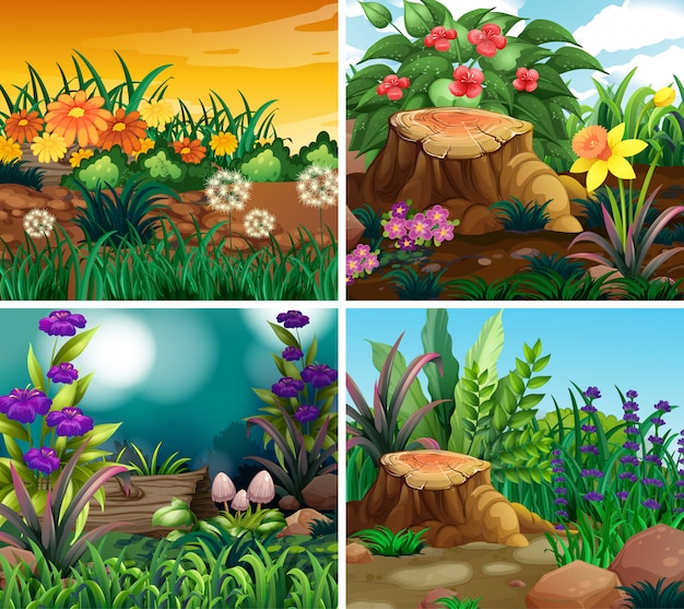 Set of scene with nature theme