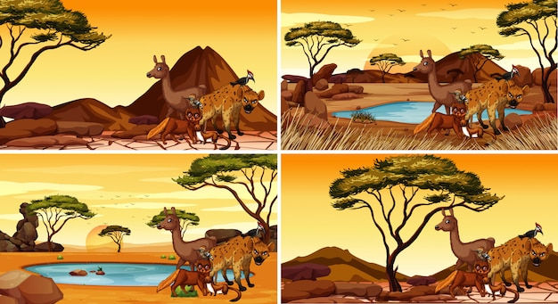 Set of scenes with animals in desert
