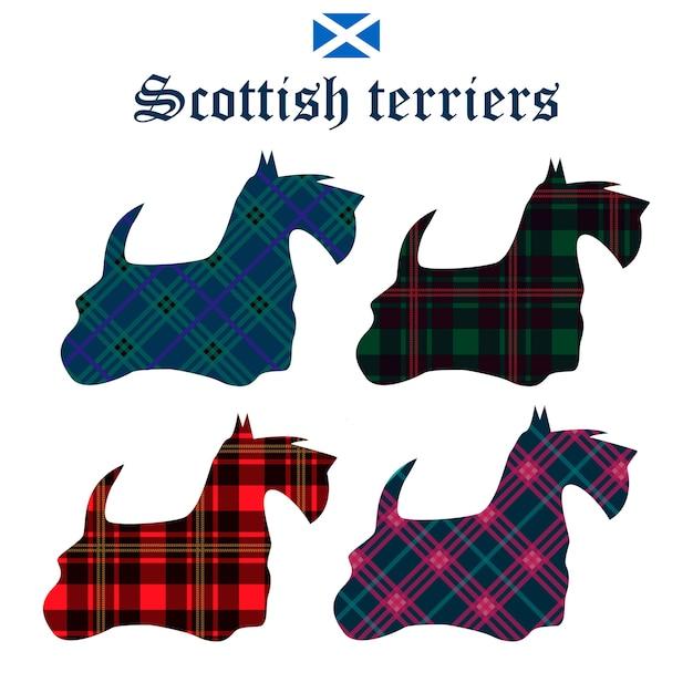Set of scottish terriers on tartan background.