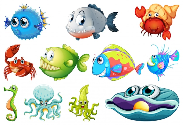 Set of sea creatures