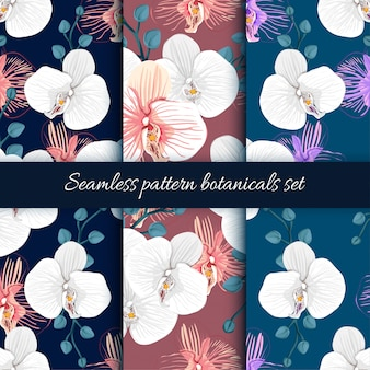Set of seamless pattern orchid flowers background.