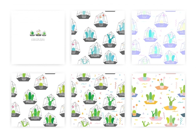 Set of seamless pattern with cactuses in glass terrariums. illustrations for gift wrap design.