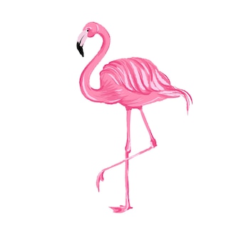 Set of seamless vector tropical pattern with pink flamingos
