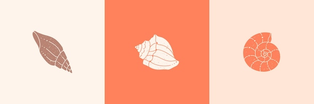 Set of seashells outline icons in a trendy minimal style. vector illustration of a conch, snail, scallop and for website, t-shirt print, tattoo, social media post and stories